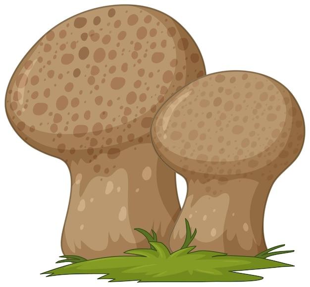 Pilz-cartoon-stil isoliert auf weißem hintergrund