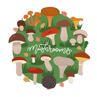 Pilze essbare vegetarische pilze poster kreis zusammensetzung cartoon champignon steinpilzwald ...