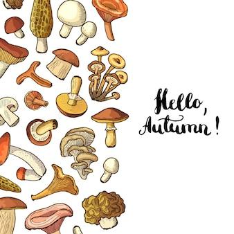 Pilze hintergrund mit schriftzug hallo herbst