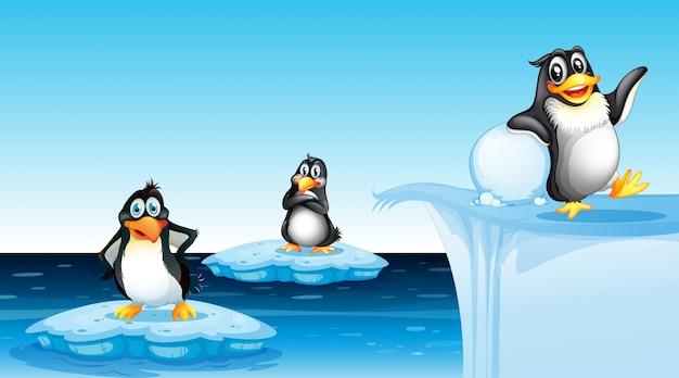 Pinguin in der arktischen landschaft
