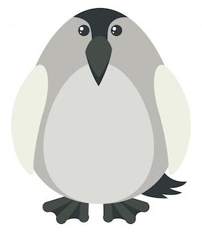 Pinguin mit grauer farbe