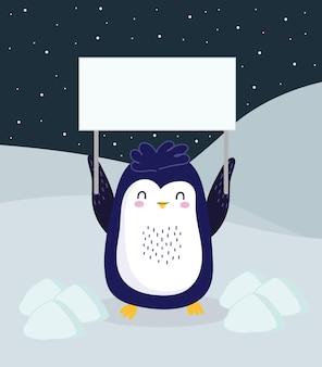 Pinguin mit pla im eis