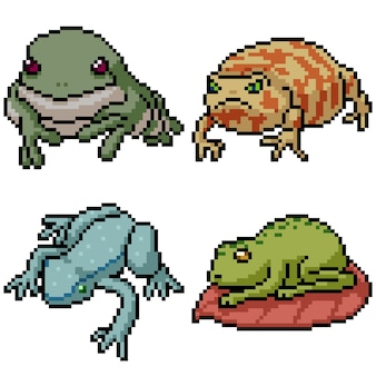 Pixel art set isoliert amphibienfrosch