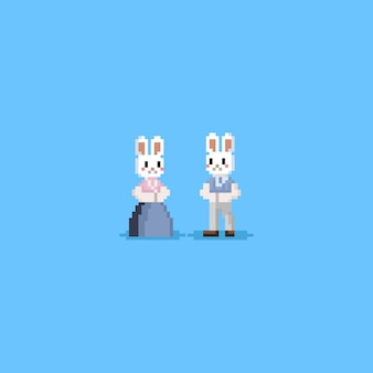 Pixel-kaninchen-charakter in hanbok-kostüm.chuseok.8bit.