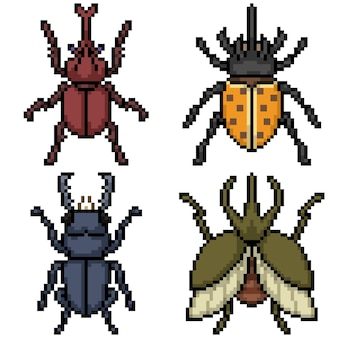 Pixelkunst der käferoberansichtillustration