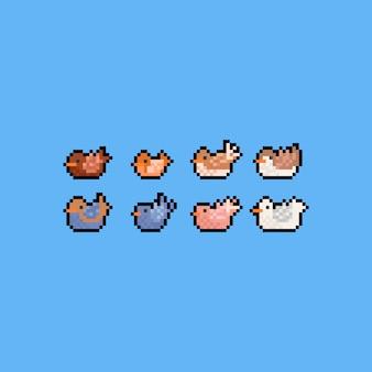 Pixelkunst-karikaturvogel-ikonensatz. 8 bit. herbst.