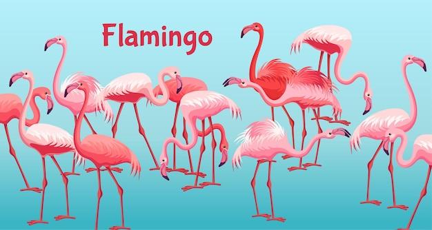 Plakat flamingo
