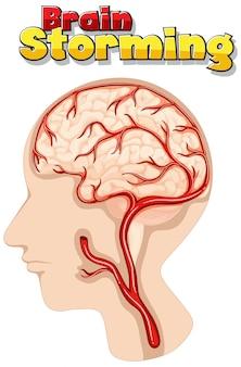 Plakatentwurf für brainstorming mit menschlichem gehirn