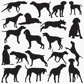 Pointer dog silhouettes