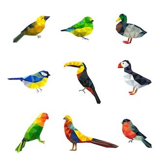 Polygonale vögel. dreieck abstrakte formen grafik fliegende vögel sammlung asiatische tiere vektor zeichen sammlung. illustration papagei und kakadu, ente und gimpelvogel