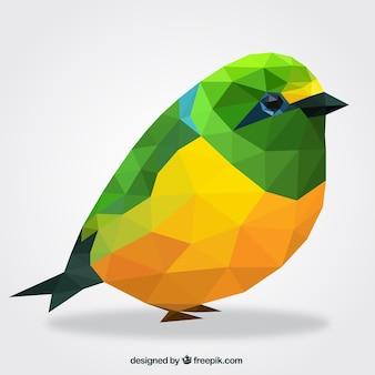 Polygonale vogel