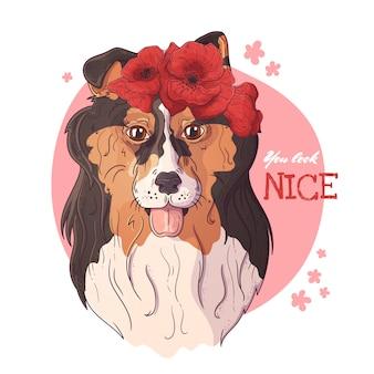 Porträt des colliehundes mit einem kranz von mohnblumen.