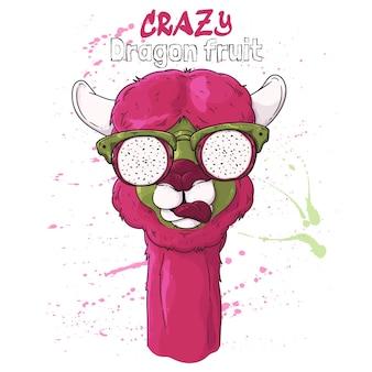 . porträt des niedlichen alpakas in den gläsern in den pitaya-effektgläsern.