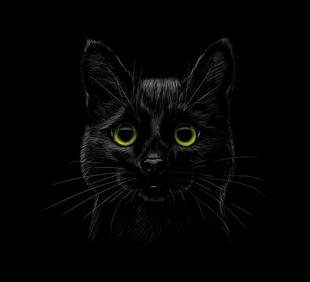 Porträt einer katze auf einem schwarzen hintergrund. vektorillustration