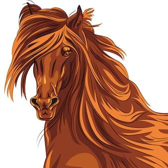 Porträt einer pferdeillustration