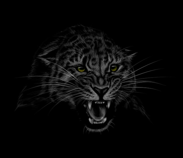 Porträt eines leopardenkopfes auf einem schwarzen hintergrund. grinsen eines leoparden. illustration