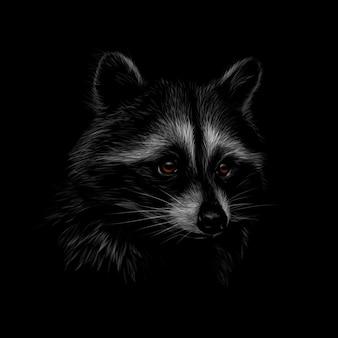 Porträt eines niedlichen waschbären auf einem schwarzen hintergrund. illustration