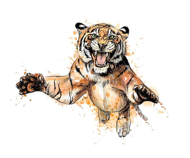 Porträt eines tigers, der von einem spritzer aquarell springt, handgezeichnete skizze. illustration von farben