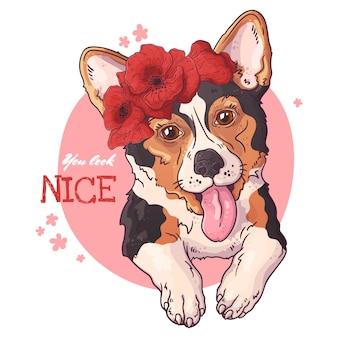 Portrait eines netten corgihundes.