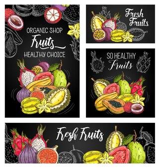 Poster mit exotischen früchten mit skizze mangostan, papaya und feigen, durian mit karambolen, guaven, litschi, pitahaya und passionsfrüchten