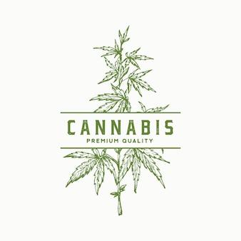 Premium qualität cannabis abstrakte zeichen, symbol oder logo-vorlage. hand gezeichneter grüner hanfzweig mit blättern skizzieren sillhouette mit retro-typografie. weinlese-luxus-medizin-kräuter-emblem.
