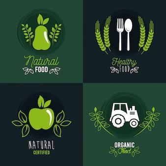 Premium und gesundes essen banner set