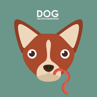 Produkte für hunde