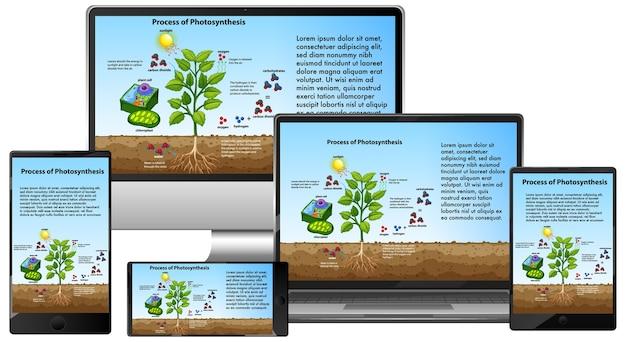 Prozess der photosynthese auf dem bildschirm elektronischer geräte