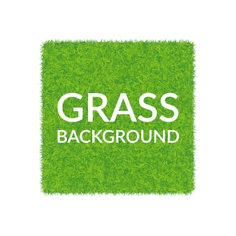 Quadratischer hintergrund des grünen grases.