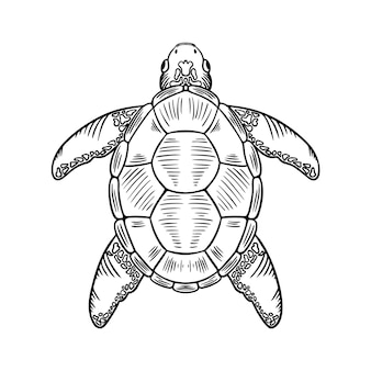 Qualle dünne linie symbol abbildung