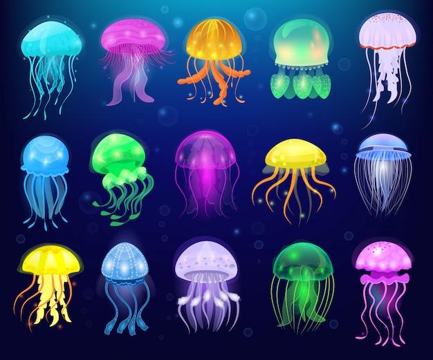 Quallenvektorozeanquallen oder seegelee und unterwassernesselfische oder medusenillustrationssatz der exotischen geleeartigen glühenden medusa oder der fische im meer