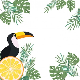 Rahmen aus tukan und sommerblume