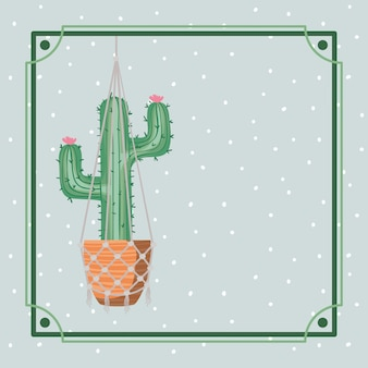 Rahmen mit kaktus houseplant in makramee hängen