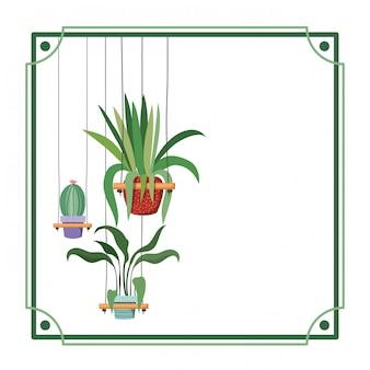 Rahmen mit zimmerpflanzen auf makramee-kleiderbügeln