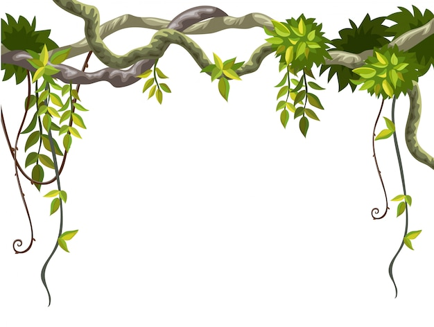 Rahmen von lianenzweigen und tropischen blättern.