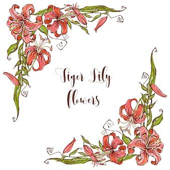 Rahmendekor mit lily blumen. dekorative ecke.