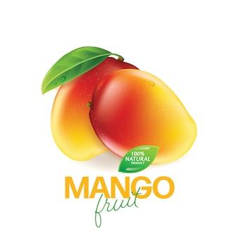 Realistisch detailliertes ganzes und stücke mango
