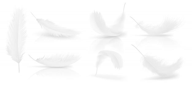 Realistische 3d-set von weißen vogel oder engel federn in verschiedenen formen