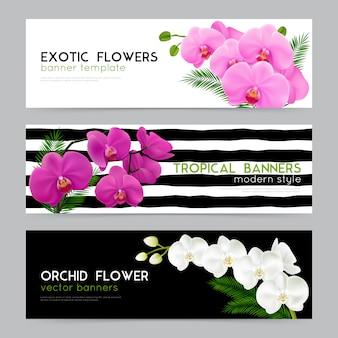 Realistische banner der blühenden orchideen eingestellt