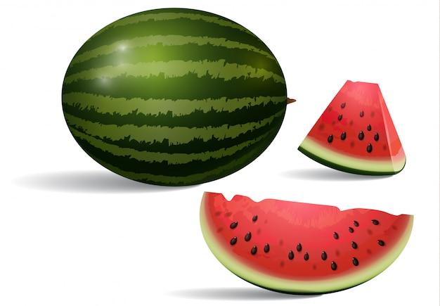 Realistische darstellung der wassermelone. nachtisch, frieden, scheibe. frucht-konzept.