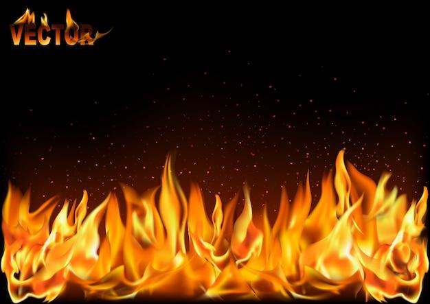 Realistische feuerflammen auf schwarzem hintergrund