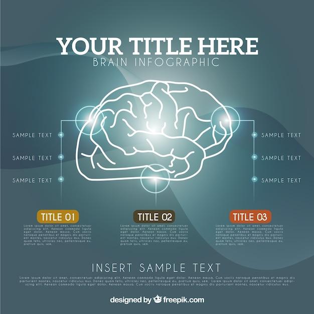 Realistische gehirn infografik-vorlage