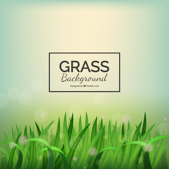 Realistische gras hintergrund mit bokeh-effekt