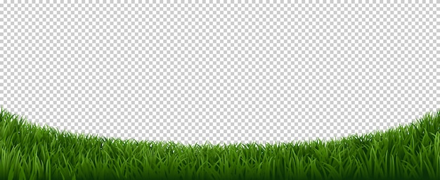 Realistische grasgrenze. grüner kräuterrasen, gartenkräuterpflanzenrahmen, frischer rasenrandelementhintergrund. horizontale grenze rasen gras, wiese feld grüne illustration
