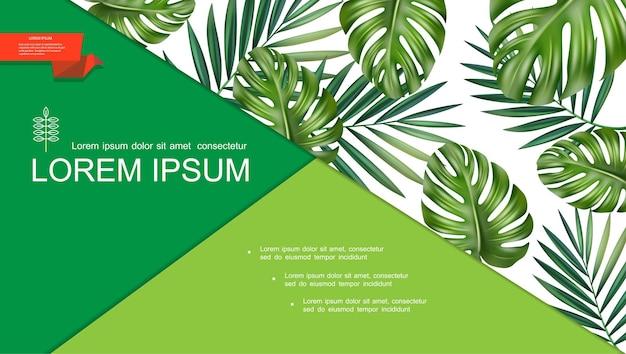 Realistische grüne tropische pflanzenschablone mit natürlichen schönen monster- und palmblättern