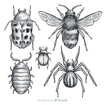 Realistische hand gezeichnete insektenskizzensatz