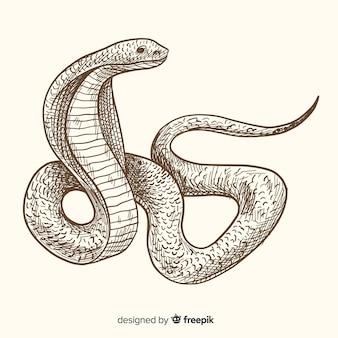 Realistische hand gezeichneter weinleseschlangenhintergrund