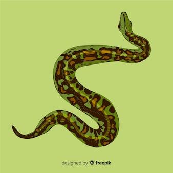 Realistische handgezeichnete pythonschlange hintergrund
