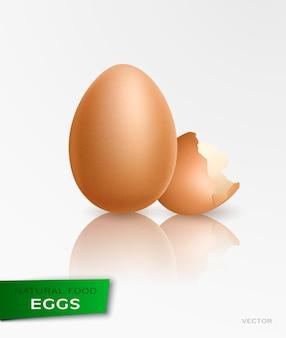 Realistische hühner aus ei. ostern, huhn, geburt 3d-vektor-illustration