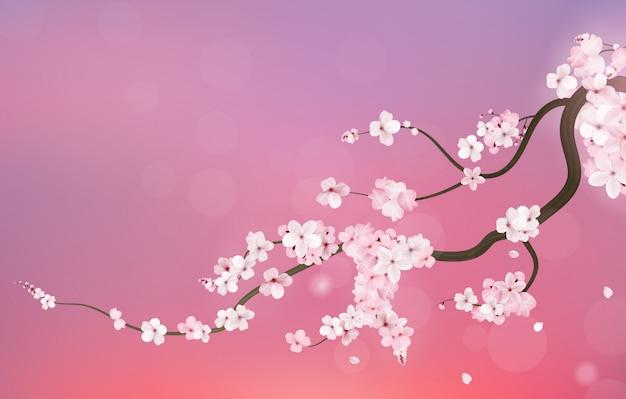 Realistische kirschzweig kirschblütes japan